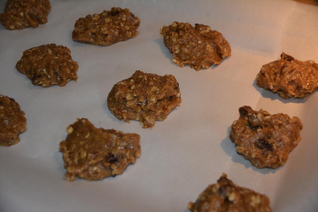 Baby Cakes Oatmeal Raisin Cookies (11)