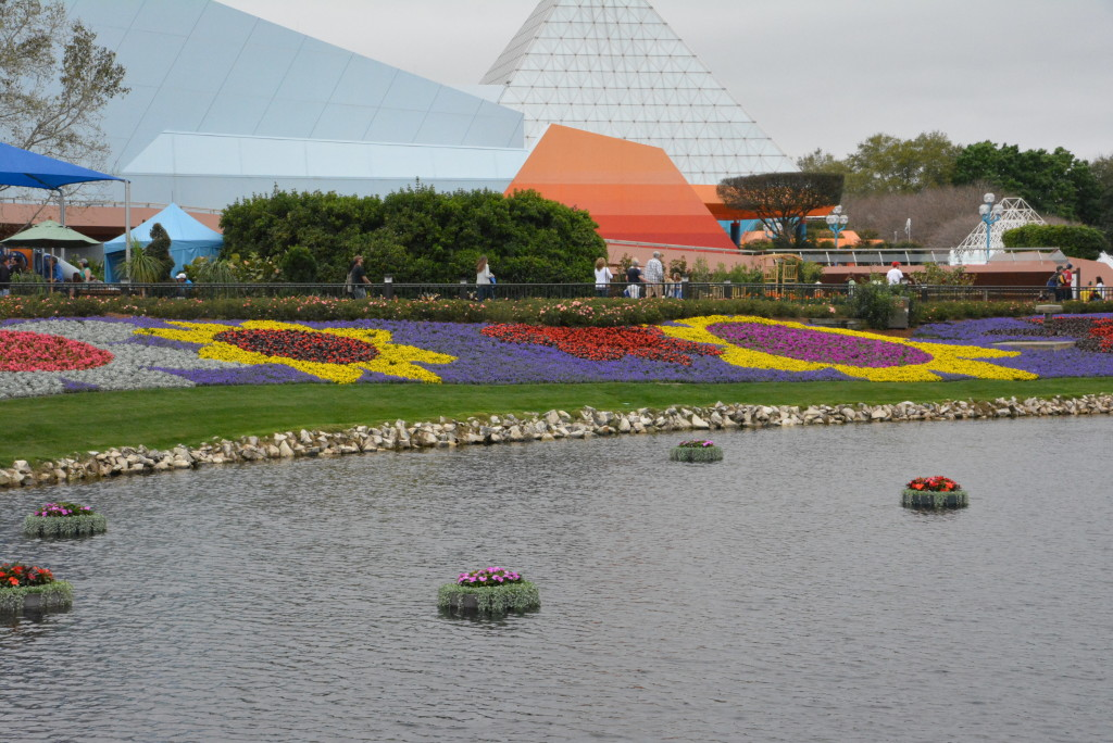 Gorgeous flowers around the water. Can you spot the Mickey?